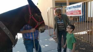 Jane the Mule visit (4)
